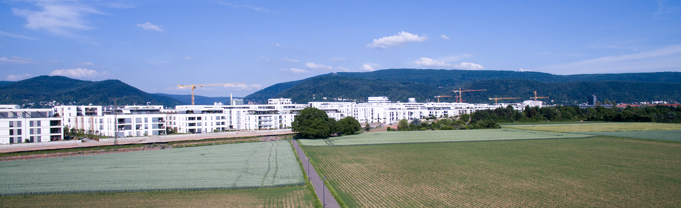 Panorama of Bahnstadt (Photo: Buck)
